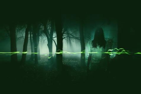 EVP-ghost