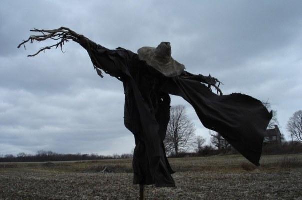 scarecrow2-793x526